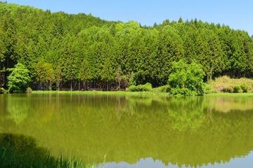 ryuogahuti20190523-03