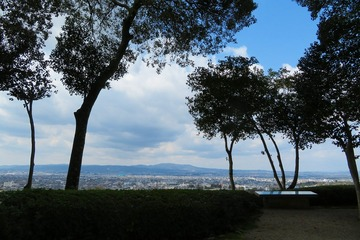 byakugoji20200315-07