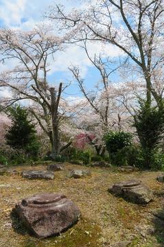 sesonji20200404-04