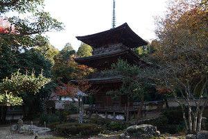 Kashiwabara06