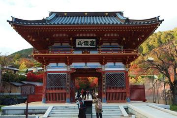 katuoji20181114-01