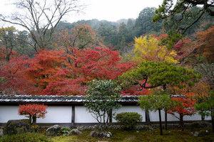 11shiryakuji