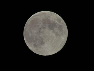 昨夜の中秋の名月