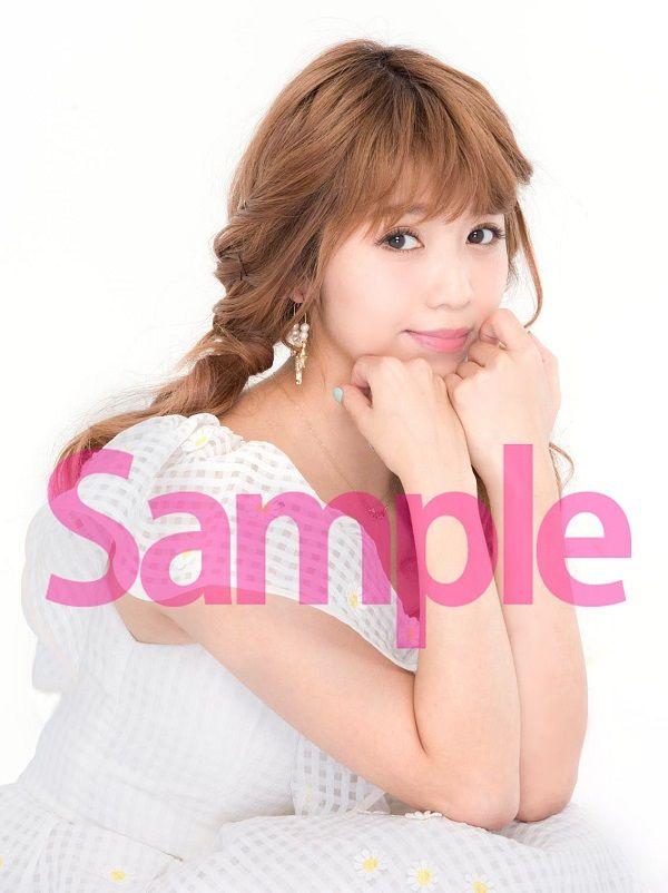 Pile_web_sample
