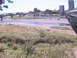 相模川の平水位