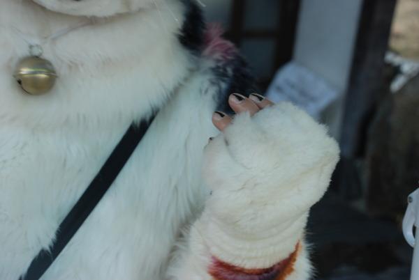 ネコの焼き芋屋さん (4)