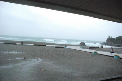 桂浜水族館 (72)