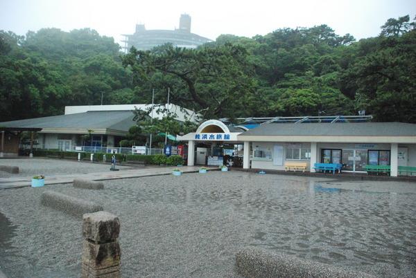 桂浜水族館 (1)