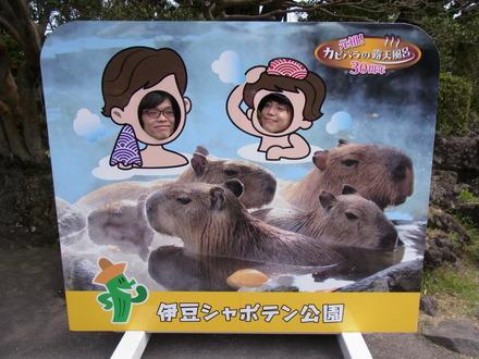 伊豆しゃぼてん公園 (73)