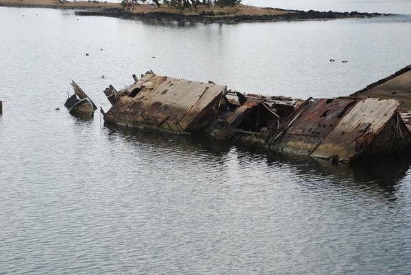 大根島の廃船 (2)