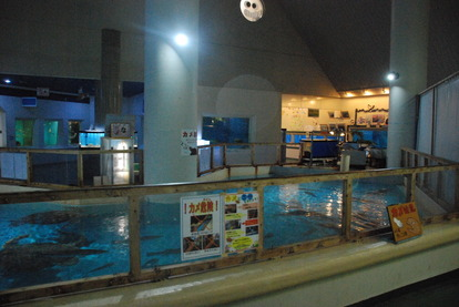 桂浜水族館 (16)