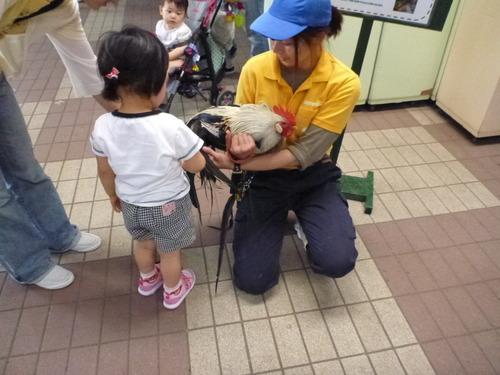 羽村動物園 (51)
