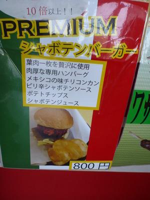 伊豆しゃぼてん公園 (52)