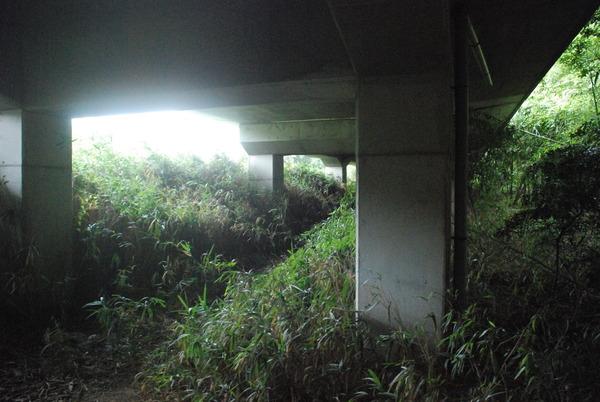 小野浦駅 (7)
