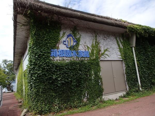 箱根園水族館 (102)