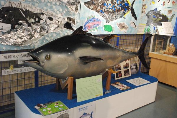 日本一の魚の剥製水族館 (4)