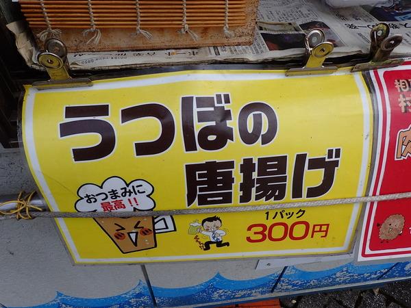 道の駅紀伊長島マンボウ (15)