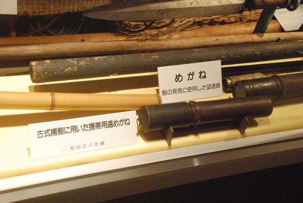 くじら博物館 (44)