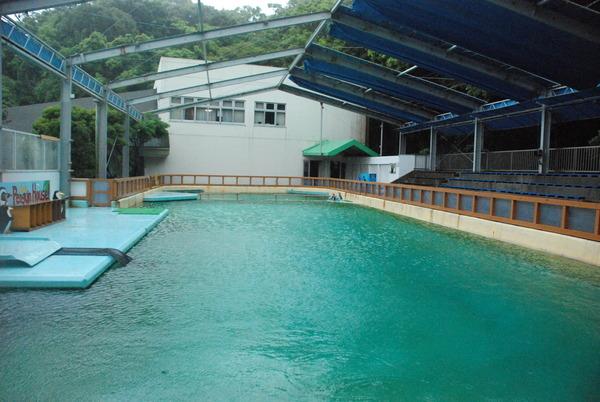 桂浜水族館 (71)