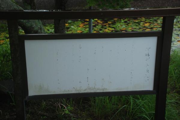 五色園墓地(14)