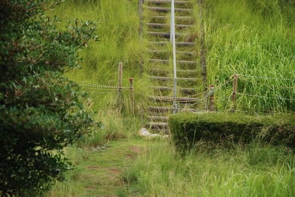 日本列島公園 (12)