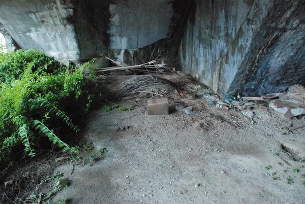 高知堰体壕 (5)