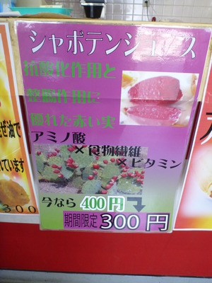 伊豆しゃぼてん公園 (50)