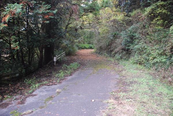 畑トンネル (2)