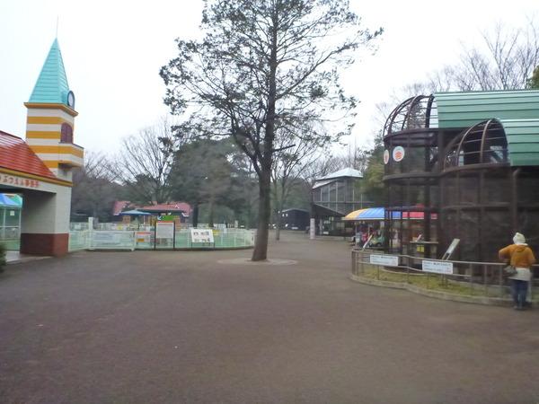 平塚市ふれあい動物園 (8)