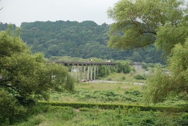 蓬莱橋 (24)