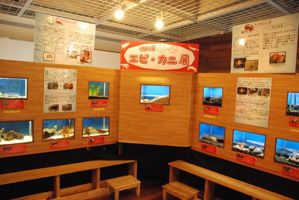 山梨県立富士湧水の里水族館 (33)