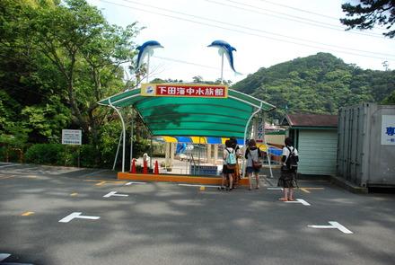 下田海中水族館 (35)