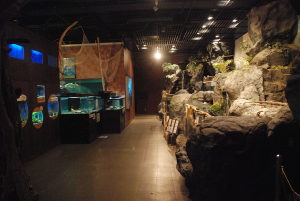 水産学習館 (4)