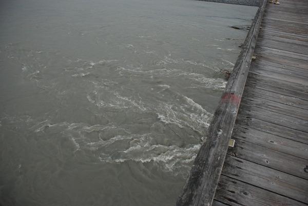 蓬莱橋 (12)