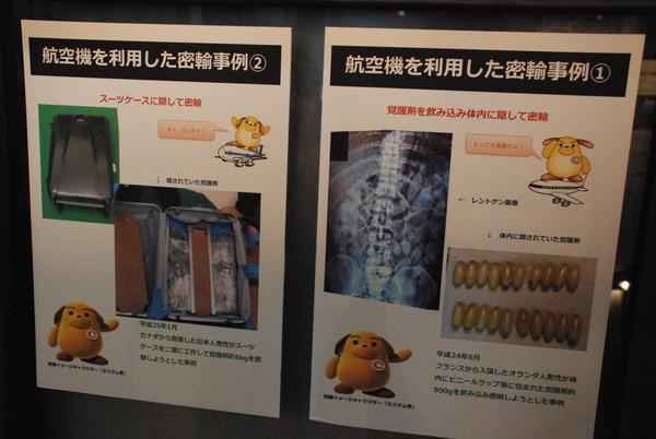 横浜税関展示室 (8)