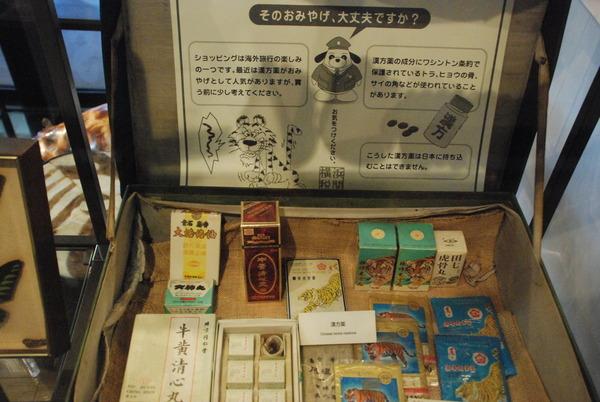 横浜税関展示室 (11)