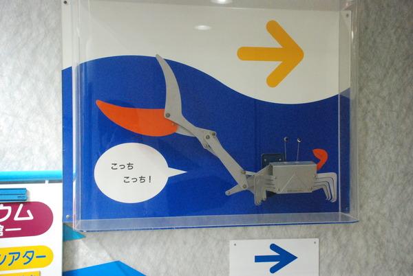 東海大海洋生物博物館 (4)