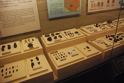明治大学博物館 (4)