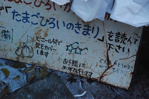 宮ヶ瀬コッコランドパーク (10)
