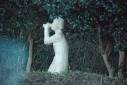 雲見彫刻ライン (18)