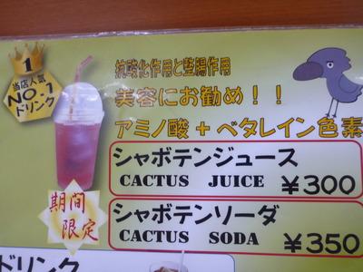伊豆しゃぼてん公園 (49)