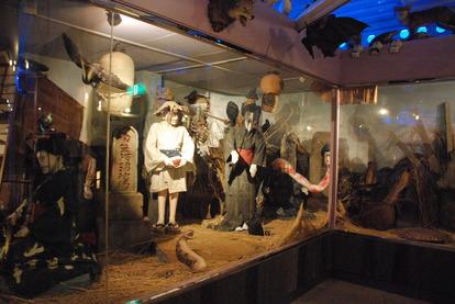 怪しい少年少女博物館 (24)