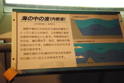 東海大海洋生物博物館 (6)