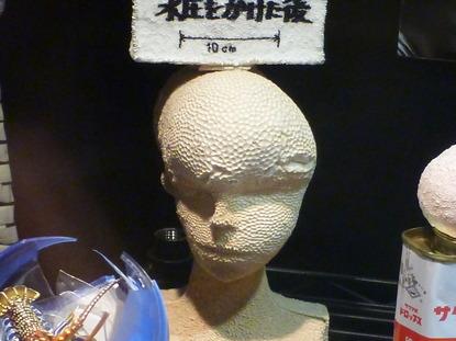 江ノ島水族館 (39)