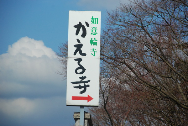 かえる寺 (1)