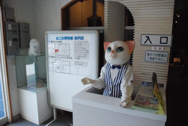 猫の博物館 (2)