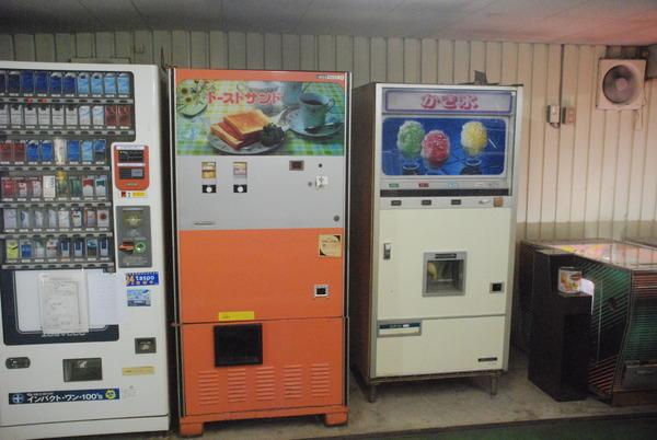 オレンジ353 (5)