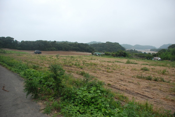 貝殻公園 (1)
