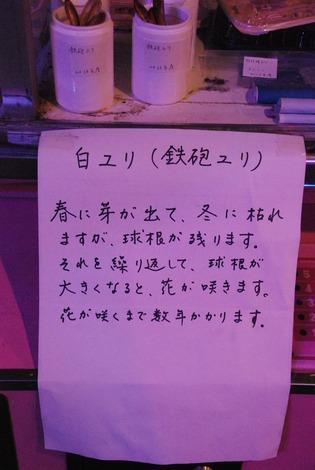 鉄剣タロー (13)