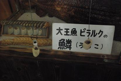 別府地獄めぐり (6)